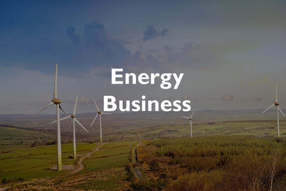 in2tel-Energy-Business-case-study